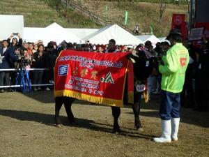 2018年10月28日(日) 第100回 兵庫県畜産共進会 肉牛の部 名誉賞受賞牛