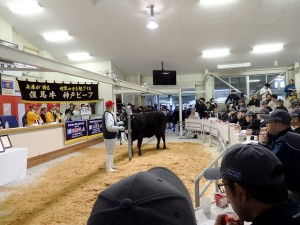 2019年10月24日(木) 第101回 兵庫県畜産共進会 (但馬家畜市場) せりのようす